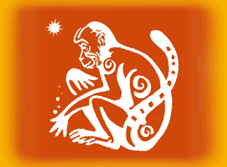 Год Оранжевой обезьяны