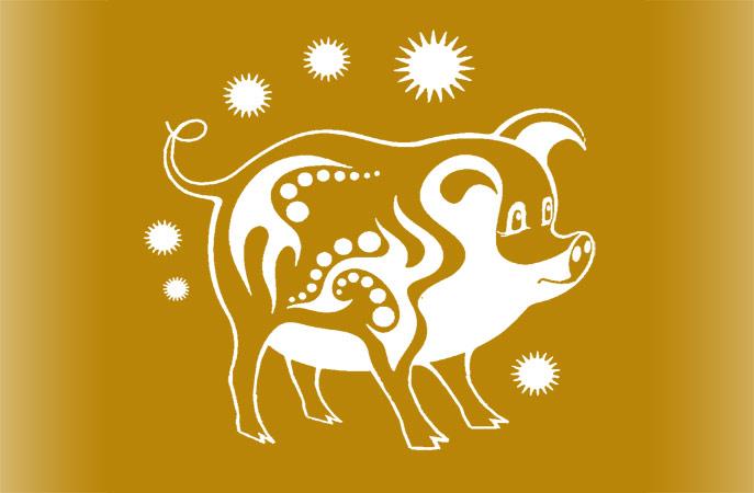 Год Золотой Свиньи