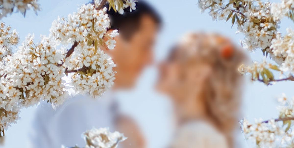 svadba-v-maye.jpg