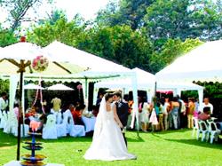 svadba_na_prirode.png