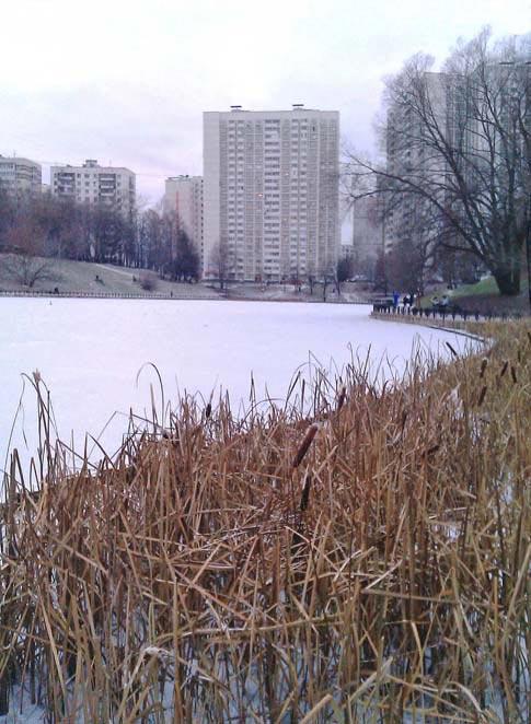zima_v_moskve_1.jpg