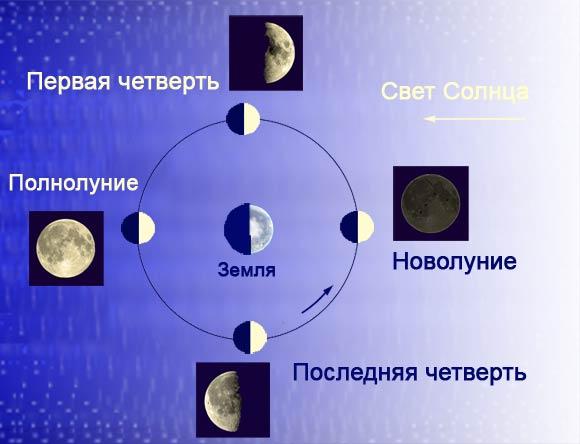 Фазы Луны. Схема смены фаз при орбитальном движении
