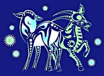 Год овцы и козы