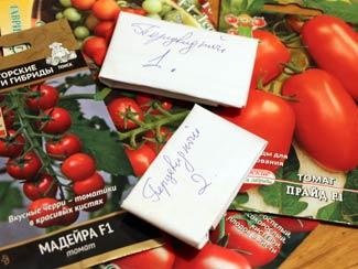 Посевы томатов на рассаду 2016