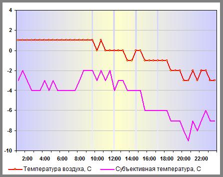 Субъективная температура в Н.Новгороде 29 декабря 2012 года