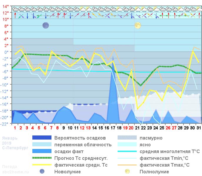 График температуры январь 2019, spb
