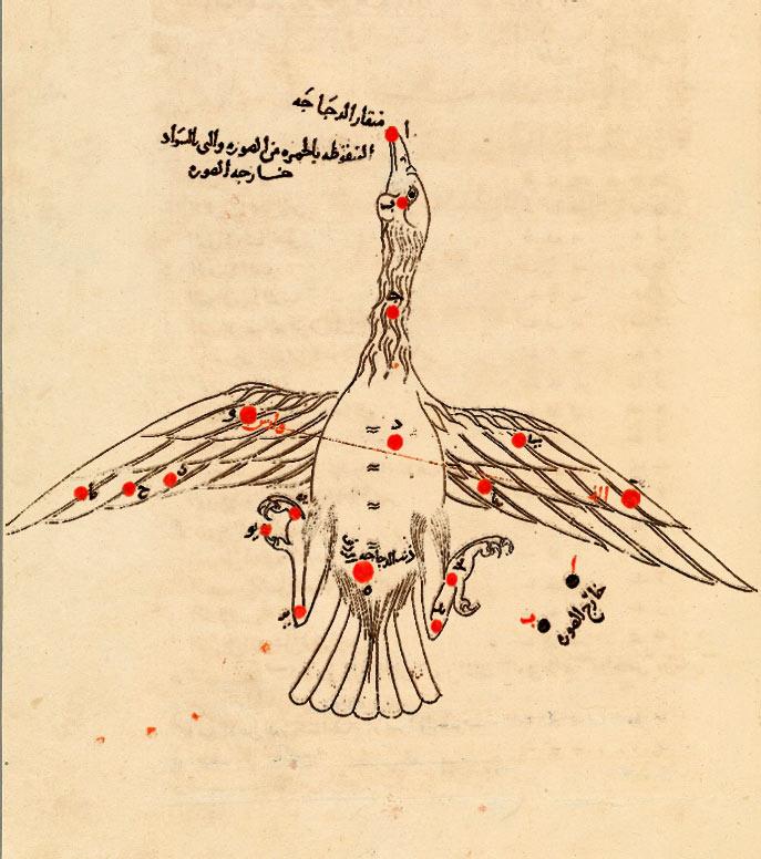 Созвездие Лебедь. Иллюстрация из «Книги неподвижных звезд» ас Суфи