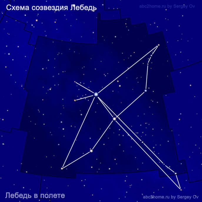 Схема созвездия Лебедь: Лебедь в полете