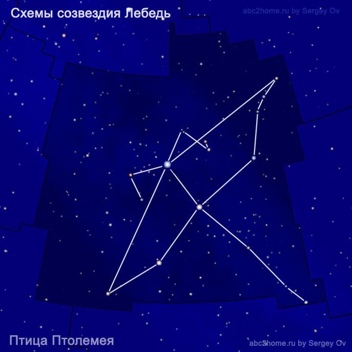 Схема созвездия Лебедь: Птица Птолемея
