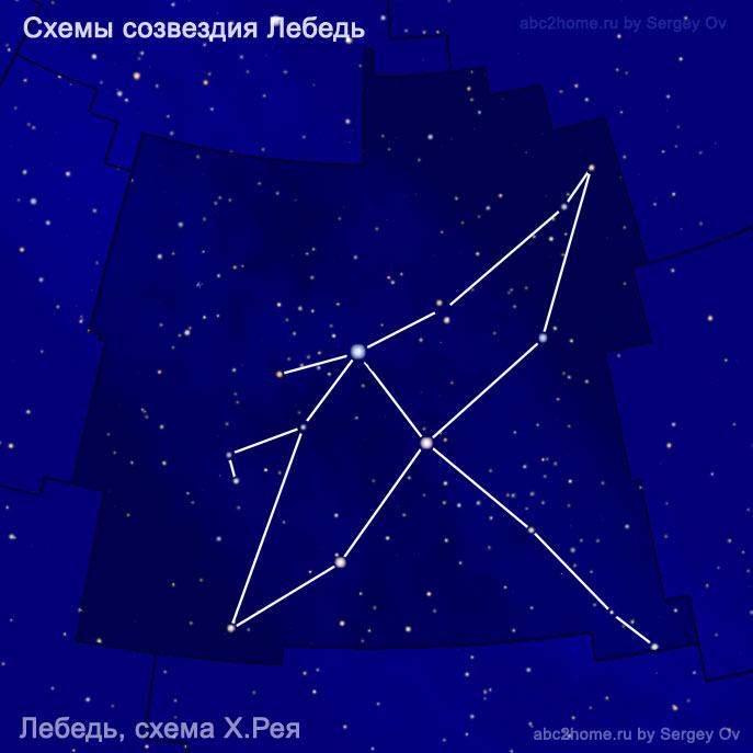 Схема созвездия Лебедь - схема Лебедя от Х. Рея
