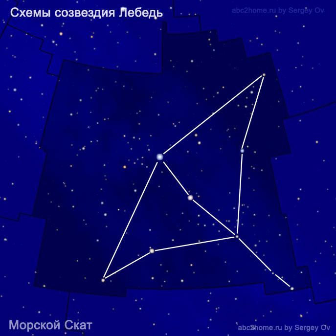 Схема созвездия Лебедь - морской скат