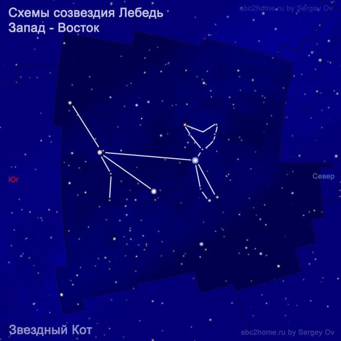 Схема созвездия Лебедь:  Звездный кот, ктенок, коот