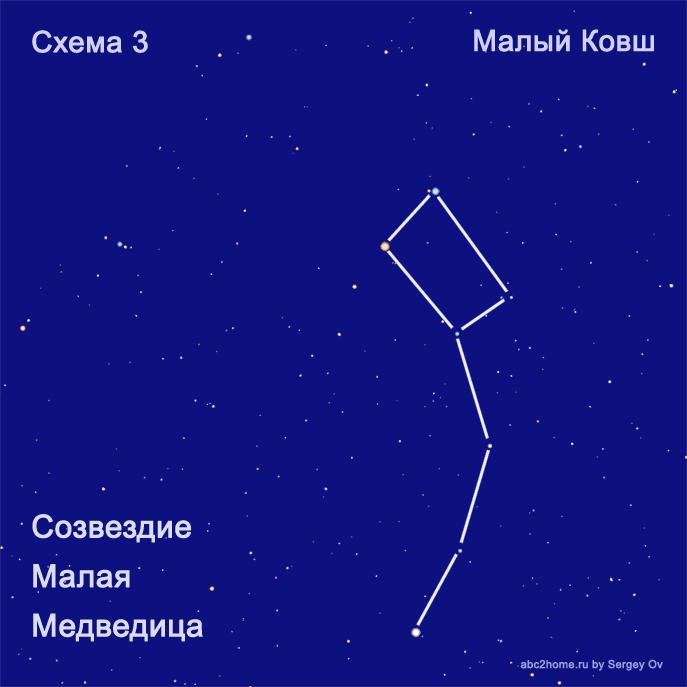 malaya_medvedica_shema_kovsh.png