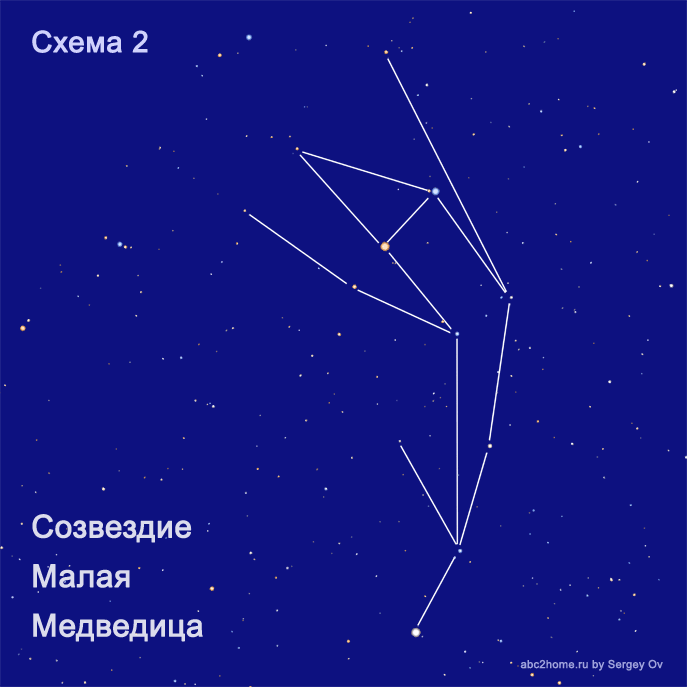 malaya_medvedica_shema_zver.png