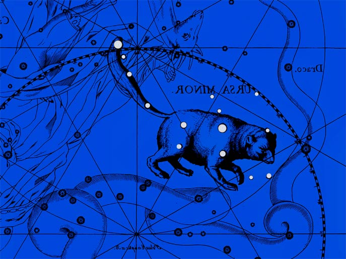Созвездие Малая Медведица. Коллаж по атласу Яна Гевелия