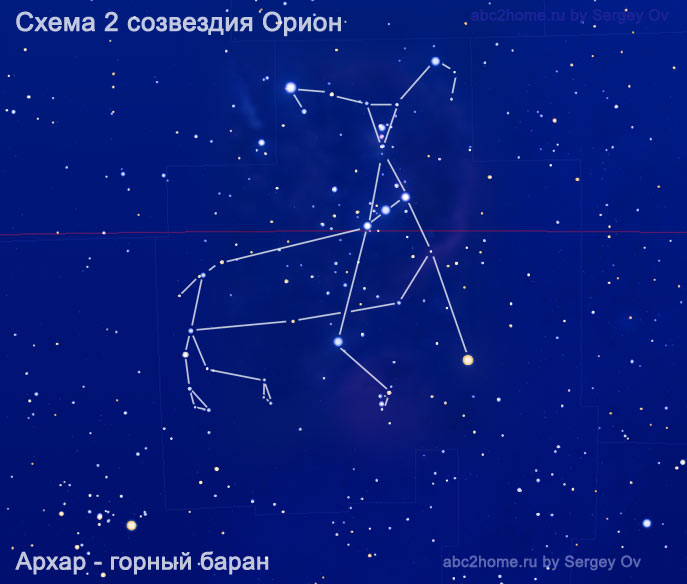 Схема созвездия Орион. Архар, горный баран