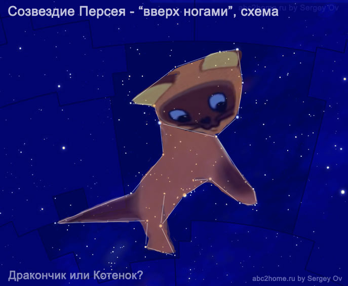 perseus_kotyonok.jpg