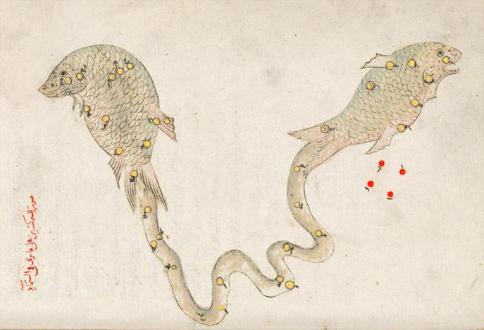 Созвездие Рыбы. Иллюстрация из «Книги неподвижных звезд» ас Суфи