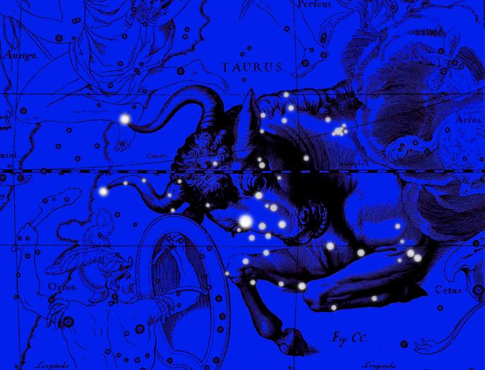Созвездие Телец. Коллаж по атласу Яна Гевелия