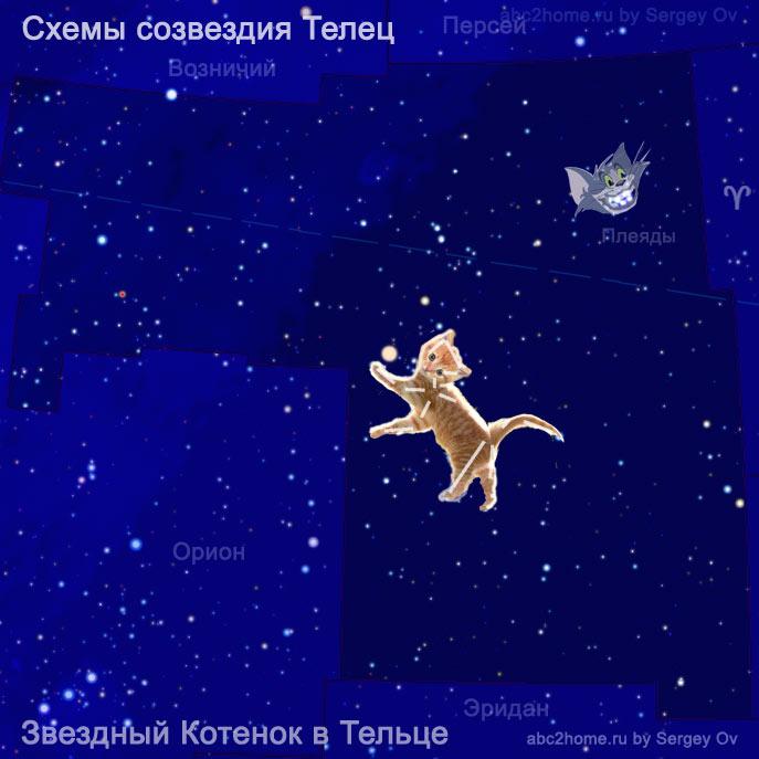 Рыжий Звездный Котенок и улыбка Чеширского Кота