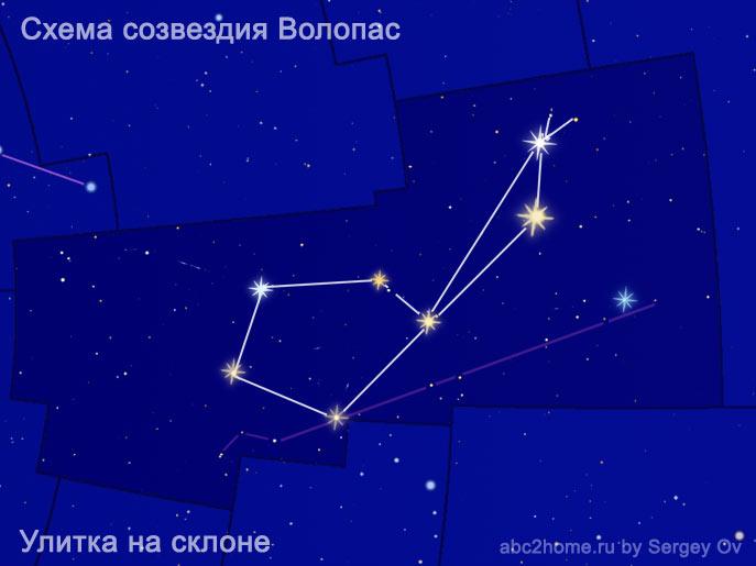 volopas_ulitka.jpg