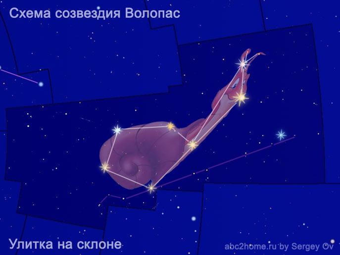 Схема созвездия Волопас. Мультяшная улитка