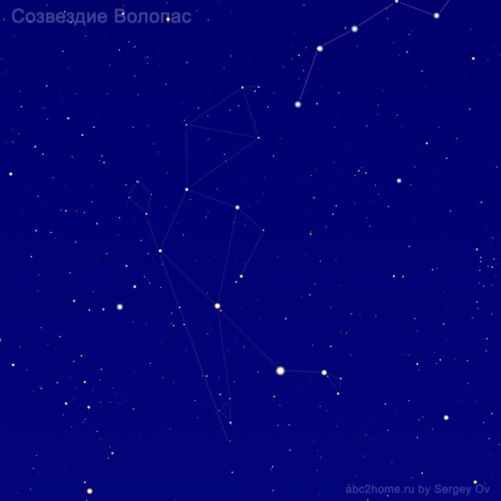 Созвездие Волопас, звезды созвездия Волопаса